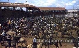 wes001282 - Western, Cowboy, Cowgirl, Postcard Postcards