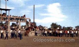 wes001283 - Western, Cowboy, Cowgirl, Postcard Postcards