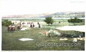 wes001295 - Western, Cowboy, Cowgirl, Postcard Postcards