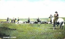 wes001301 - Western, Cowboy, Cowgirl, Postcard Postcards