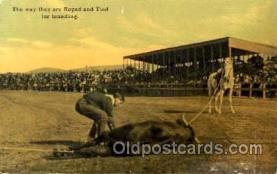 wes001317 - Western, Cowboy, Cowgirl, Postcard Postcards