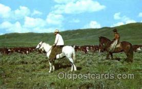 wes001320 - Western, Cowboy, Cowgirl, Postcard Postcards