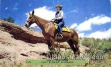 wes001402 - Fort Lupton, Colorado, USA, Cowgirl Postcard Postcards