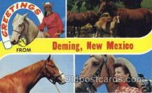 wes001412 - Deming, New Mexico, USA Western Cowgirl Postcard Postcards