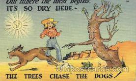 wes001422 - Western Cowgirl Postcard Postcards