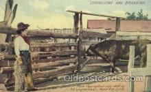wes001424 - Western Cowgirl Postcard Postcards