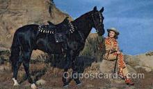 wes001434 - Western Cowgirl Postcard Postcards
