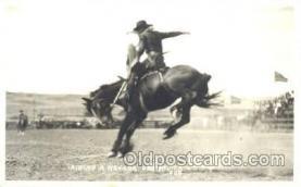 wes002029 - Nevada Bronco, Western Cowboy Postcard Postcards