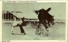 wes002106 - Bucking Bronc at Texas Centennial Exposition, Western Rodeo Cowboy, Cowgirl Postcard Postcards