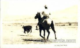wes002114 - Western Cowboy, Cowgirl Postcard Postcards
