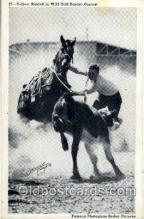 wes002124 - Delbert Riddell in Wild Calf Roping Contest, Western Rodeo Cowboy, Cowgirl Postcard Postcards