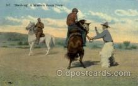 wes002128 - Western Postcard Postcards