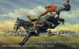 wes002142 - Nesbitt & Elliot Western Postcard Postcards