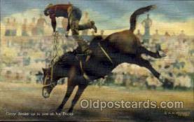 wes002143 - Crazy Snake Western Postcard Postcards