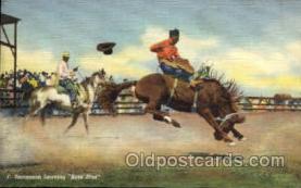wes002147 - F. Stevenson Western Postcard Postcards