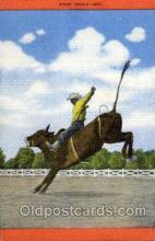 wes002159 - Western Postcard Postcards
