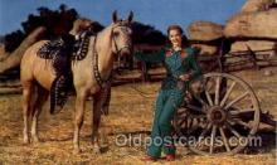 wes002176 - Western Postcard Postcards