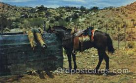 wes002198 - Western Cowboy, Cowgirl Postcard Postcards