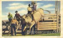 wes002216 - Highie Long Riding Western Cowboy, Cowgirl Postcard Postcards
