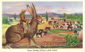 wes002221 - Texas Cowboy Riding Jack Rabbit Western Cowboy, Cowgirl Postcard Postcards