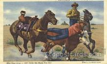 wes002227 - Roping Cattle Western Cowboy, Cowgirl Postcard Postcards