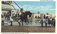 wes002229 - Riding an Outlaw Western Cowboy, Cowgirl Postcard Postcards