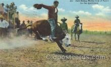 wes002230 - Calf Riding Western Cowboy, Cowgirl Postcard Postcards
