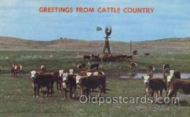 wes002258 - Western Cowboy, Cowgirl Postcard Postcards