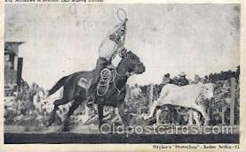 wes002273 - Roy Matthews  Western Cowboy, Cowgirl Postcard Postcards
