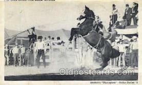 wes002274 - Paul Gould Western Cowboy, Cowgirl Postcard Postcards