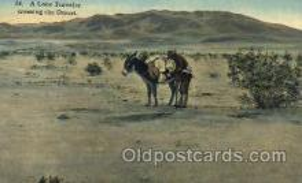 wes002276 - Lone Traveler Crossing Desert Western Cowboy, Cowgirl Postcard Postcards