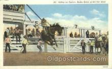 wes002282 - Riding an Outlaw Western Cowboy, Cowgirl Postcard Postcards