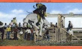 wes002298 - Bucking Bronco Western Cowboy, Cowgirl Postcard Postcards