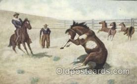 wes002299 - Western Cowboy, Cowgirl Postcard Postcards