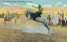 wes002302 - Cowboy Riding Bronco Western Cowboy, Cowgirl Postcard Postcards