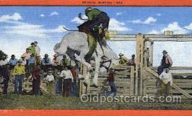 wes002304 - Western Cowboy, Cowgirl Postcard Postcards