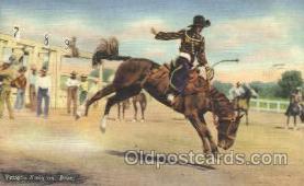 wes002305 - Vaughn Kreig Western Cowboy, Cowgirl Postcard Postcards