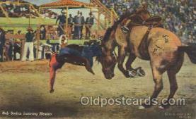 wes002306 - Bob Boden Western Cowboy, Cowgirl Postcard Postcards