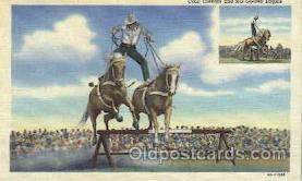 wes002343 - Cecil Cornish Western Cowboy, Cowgirl Postcard Postcards