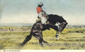 wes002358 - Bucking Bronco Western Cowboy, Cowgirl Postcard Postcards