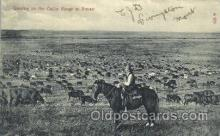 wes002366 - Cattle Grazing Land Western Cowboy, Cowgirl Postcard Postcards