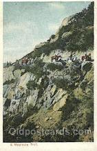 wes002402 - Mountain Trail Western Cowboy, Cowgirl Postcard Postcards