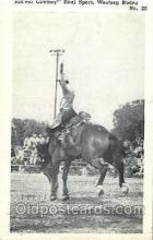 wes002412 - Western Rodeo Western Cowboy, Cowgirl Postcard Postcards