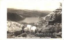 wes002496 - Strawberry Lake Western Cowboy, Cowgirl Postcard Postcards