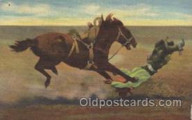 wes002576 - Bucking Broncho Western Cowboy, Cowgirl Postcard Postcards