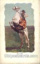 wes002652 - Western Cowboy, Cowgirl Postcard Postcards