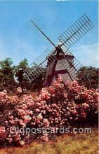 Oldest Windmill