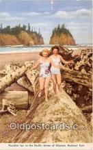 wom001583 - Vacation, Pacific Shores Olympic National Park Postcard Post Card