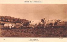 WP-LU000191