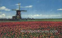 WP-NL000756